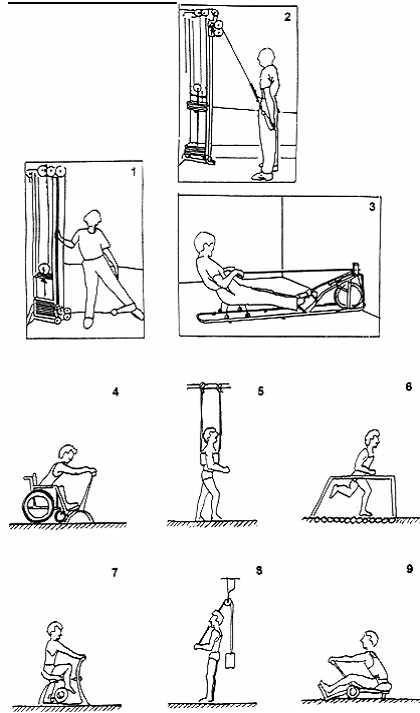Тренажеры для развития мышц: